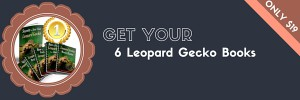 Leopard Gecko eBook