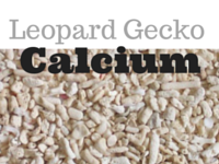Calcium Sand For Leopard Geckos?